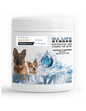 Parvo home treatment for dogs