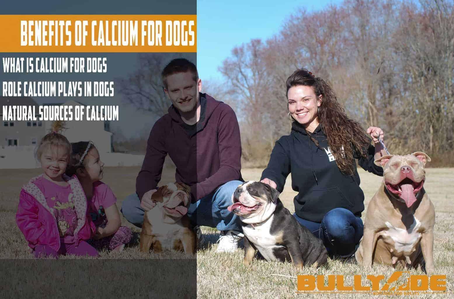 calcium for dogs