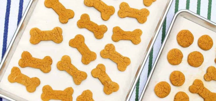 healthy home made dog treats with bullyade