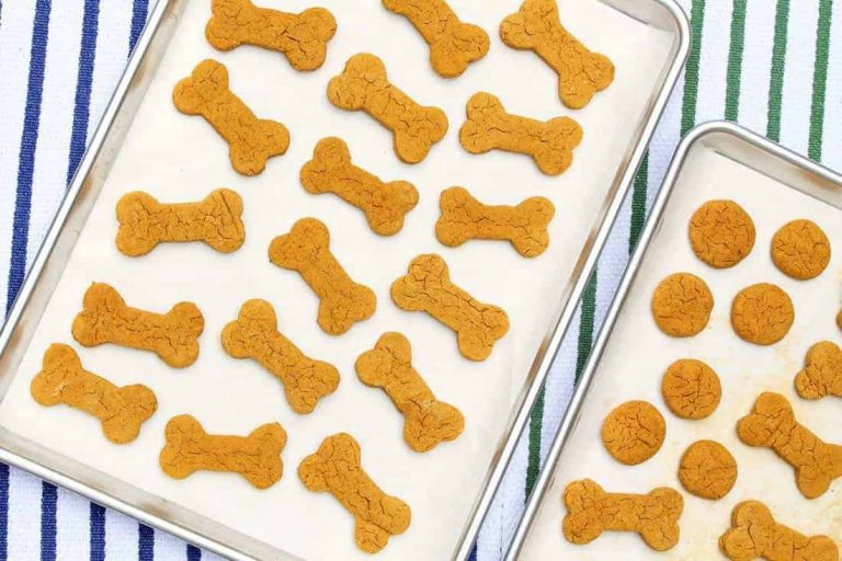 healthy home made dog treats with bullyade