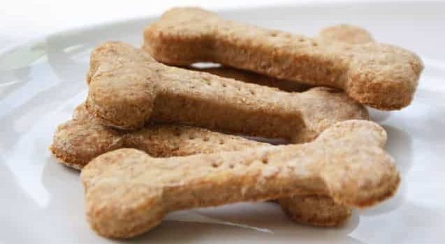 how to make homemade dog treats with bullyade added