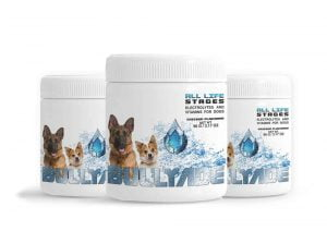 flavored electrolytes for dogs hydration for dogs