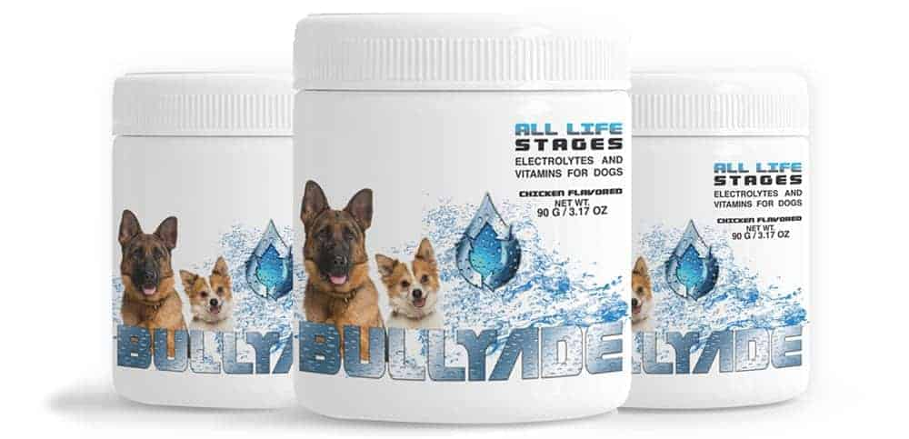 beef flavored electrolytes for dogs