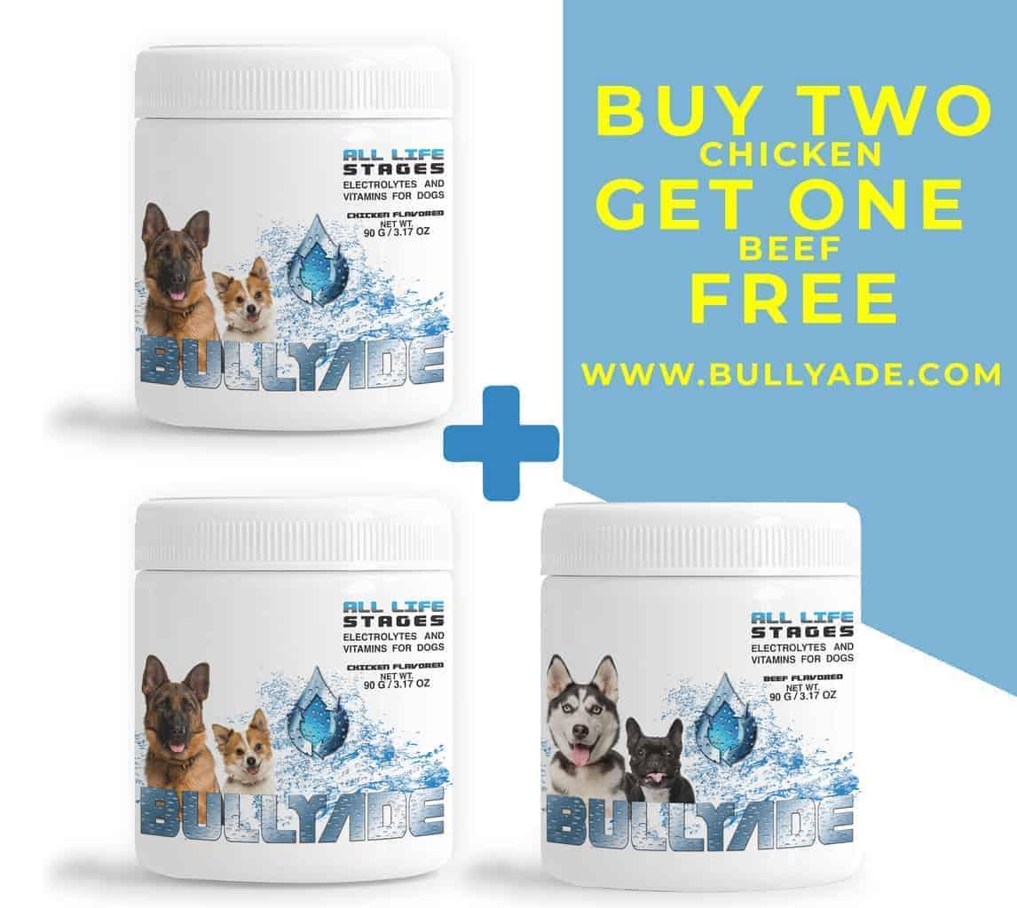 Bullyade Hydration for Dogs
