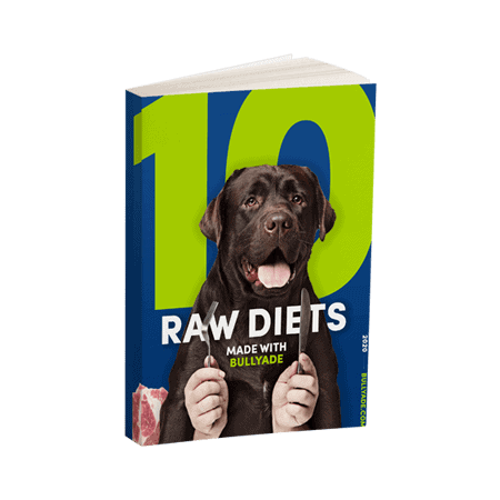 raw diet recipes for dogs